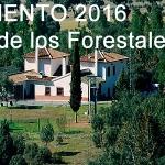 Campamento 2016 - Colegio Mayol