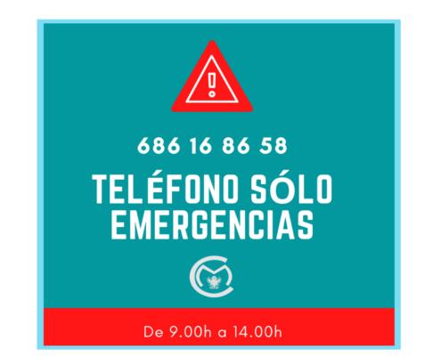 TELÉFONO EMERGENCIA CORANOVIRUS